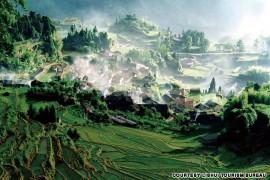 Zhejiang: Yunhe Rice Terrace